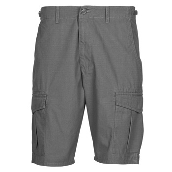 Textiel Heren Korte broeken / Bermuda's Lee CARGO SHORT FATIGUE Staal / Grey