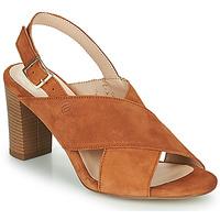 Schoenen Dames Sandalen / Open schoenen Betty London MARIPOL Cognac