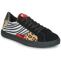 Schoenen Dames Lage sneakers Les Petites Bombes MOONWALK Zwart