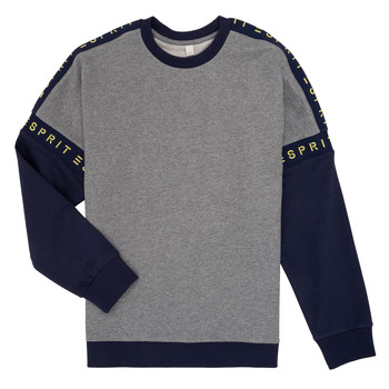 Textiel Meisjes Sweaters / Sweatshirts Esprit ELISEE Grijs