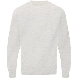 Textiel Heren Sweaters / Sweatshirts Sg Raglan Licht Oxford