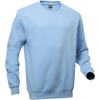 Textiel Heren Sweaters / Sweatshirts Pro Rtx RTX Hemelsblauw