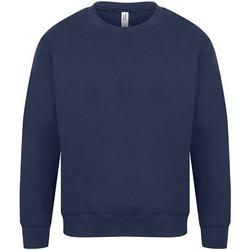 Textiel Heren Sweaters / Sweatshirts Casual Classics  Marine