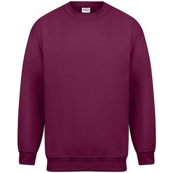 Textiel Heren Sweaters / Sweatshirts Absolute Apparel Magnum Bourgondië