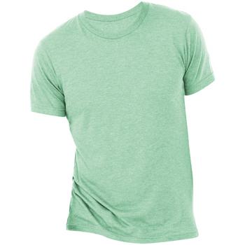 Textiel Heren T-shirts korte mouwen Bella + Canvas Triblend Munt Triblend