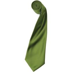 Textiel Heren Krawatte und Accessoires Premier PR750 Oase Groen