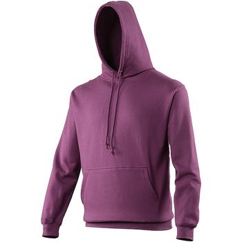 Textiel Sweaters / Sweatshirts Awdis College Pruim