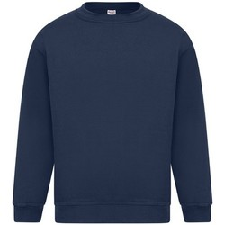 Textiel Heren Sweaters / Sweatshirts Absolute Apparel Sterling Marine