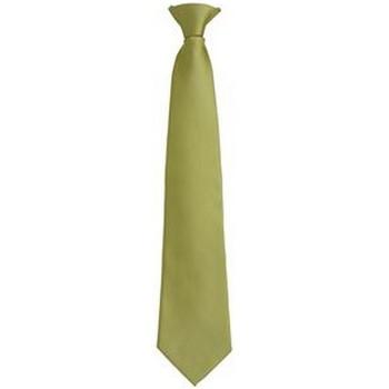Textiel Heren Krawatte und Accessoires Premier PR785 Gras