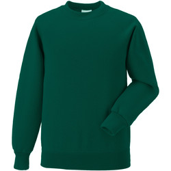 Textiel Kinderen Sweaters / Sweatshirts Jerzees Schoolgear Raglan Fles groen