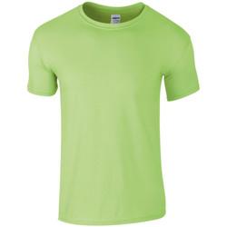 Textiel Heren T-shirts korte mouwen Gildan SoftStyle Munt