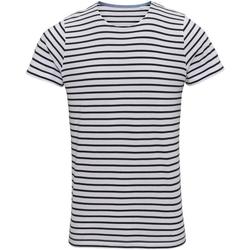 Textiel Heren T-shirts korte mouwen Asquith & Fox Mariniere Wit/Zwaar