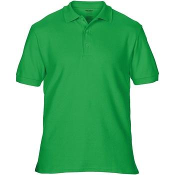 Textiel Heren Polo's korte mouwen Gildan Premium Irish Groen