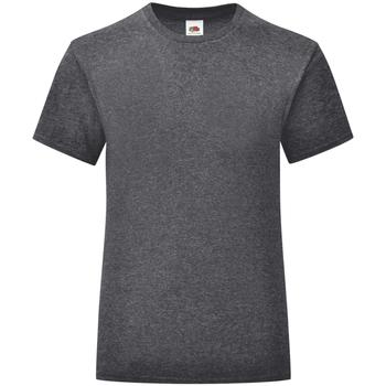 Textiel Meisjes T-shirts korte mouwen Fruit Of The Loom Iconic Donker Heather