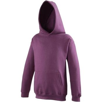 Textiel Kinderen Sweaters / Sweatshirts Awdis Hooded Pruim