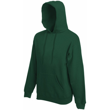 Textiel Heren Sweaters / Sweatshirts Fruit Of The Loom Hooded Bottle Groen