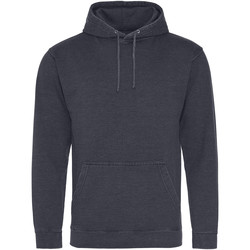 Textiel Sweaters / Sweatshirts Awdis Washed Gewassen nieuwe Franse marine
