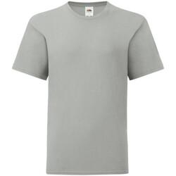 Textiel Kinderen T-shirts korte mouwen Fruit Of The Loom Iconic Zinc Grijs