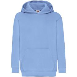 Textiel Kinderen Sweaters / Sweatshirts Fruit Of The Loom Hooded Hemel Blauw