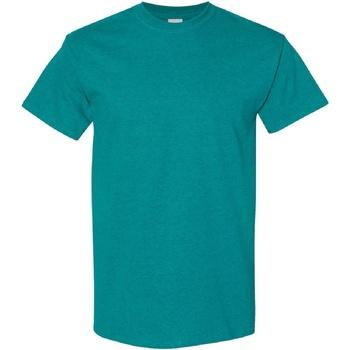 Textiel Heren T-shirts korte mouwen Gildan Heavy Antieke Jade Dome