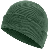 Accessoires Muts Absolute Apparel Knitted Groen