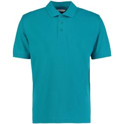 Textiel Heren Polo's korte mouwen Kustom Kit Klassic Jade