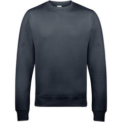 Textiel Heren Sweaters / Sweatshirts Awdis JH030 Stormgrijs