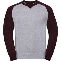 Textiel Heren Sweaters / Sweatshirts Russell R264M Licht Oxford/Burgundy Melange