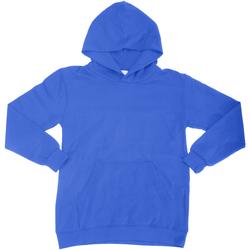Textiel Kinderen Sweaters / Sweatshirts Sg Hooded Koninklijk