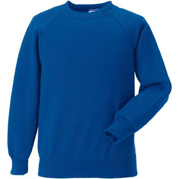 Textiel Kinderen Sweaters / Sweatshirts Jerzees Schoolgear Raglan Helder Koninklijk