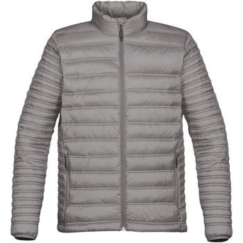 Textiel Heren Dons gevoerde jassen Stormtech Quilted Titanium