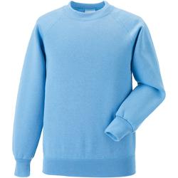 Textiel Kinderen Sweaters / Sweatshirts Jerzees Schoolgear Raglan Hemelsblauw