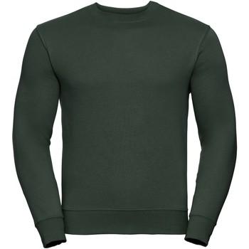 Textiel Heren Sweaters / Sweatshirts Russell Authentic Fles groen