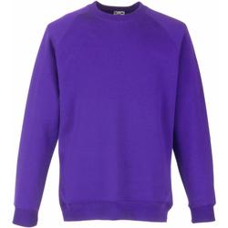 Textiel Kinderen Sweaters / Sweatshirts Fruit Of The Loom Raglan Paars