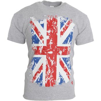 Textiel Heren T-shirts korte mouwen Gb Eye Limited Casual Sportgrijs