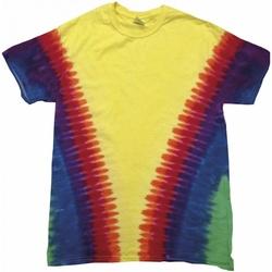Textiel T-shirts korte mouwen Colortone TD05M Regenboog Vee