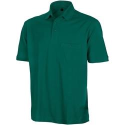 Textiel Heren Polo's korte mouwen Result Apex Fles groen