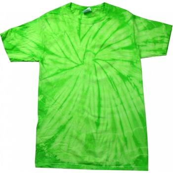 Textiel Kinderen T-shirts korte mouwen Colortone Spider Spinkalk