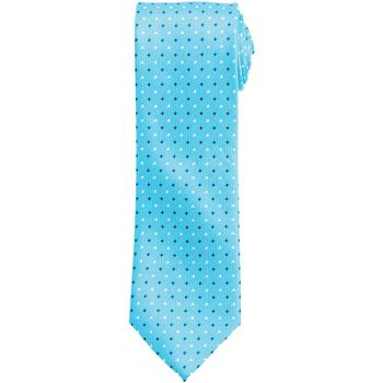 Textiel Heren Krawatte und Accessoires Premier Squares Turquoise