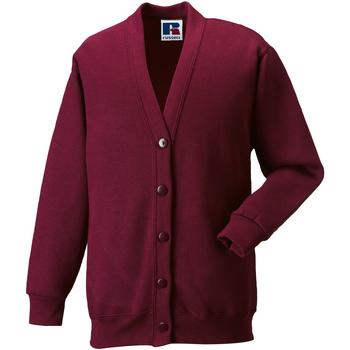 Textiel Kinderen Vesten / Cardigans Jerzees Schoolgear 273B Bourgondië