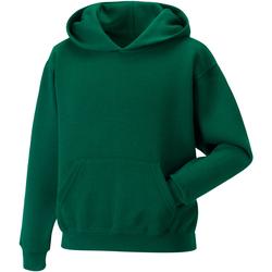 Textiel Kinderen Sweaters / Sweatshirts Jerzees Schoolgear Hooded Fles groen
