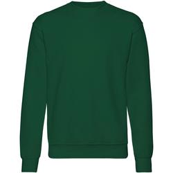 Textiel Heren Sweaters / Sweatshirts Fruit Of The Loom 62202 Bottle Groen