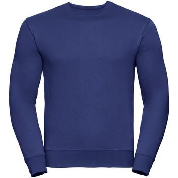 Textiel Heren Sweaters / Sweatshirts Russell Authentic Helder Koninklijk