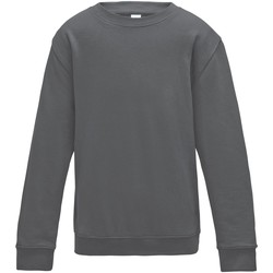 Textiel Kinderen Sweaters / Sweatshirts Awdis JH30J Stormgrijs
