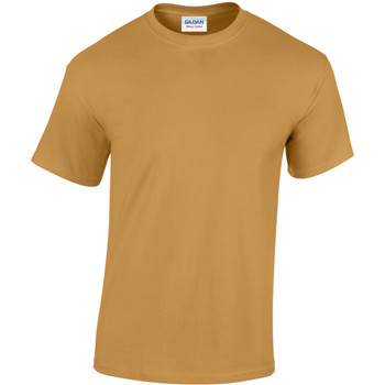 Textiel Heren T-shirts korte mouwen Gildan Heavy Oud Goud