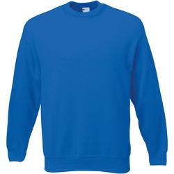 Textiel Heren Sweaters / Sweatshirts Universal Textiles Jersey Kobalt