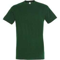 Textiel Heren T-shirts korte mouwen Sols Regent Fles groen