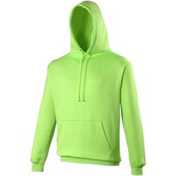 Textiel Sweaters / Sweatshirts Awdis Electric Elektrisch Groen