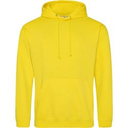 Textiel Sweaters / Sweatshirts Awdis College Zonnegeel