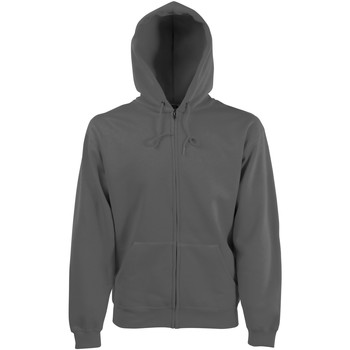 Textiel Heren Sweaters / Sweatshirts Fruit Of The Loom Hooded Licht Graphite